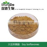 Quality soy bean plant extract Isoflavones powder