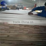 16mm Factory Supply Good Quality Black Film Finger Jointed Laminated Boards for the Middle East