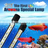 aquarium LED lighting for arowana fish
