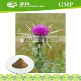 Chinese natural herbal medicine Supplements Milk Thistle Powder Extract for milk thistle tablets