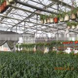 Horticultural Agricultural Green House for Tomato/Strawberry/Grape