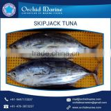 Top Quality Canned Skipjack Tuna at Competitive Price