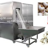 Full Automatic Garlic Bulb Separating and Peeling Machine
