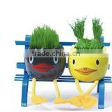 DIY growing grass doll, Grass toy with ceramic pot