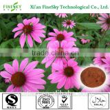 New product natural echinacea extract powder