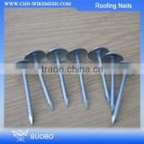 Hot Sale!!! Plastic Cap Roofing Nails, Umbrella Head Roofing Nails, Colored Head Roofing Nails With Washer