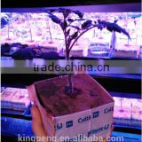 Greenhouse used hydroponic rock wool