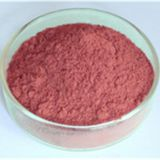 Grape Seed Extract,antioxidant Grape Seed Extract Supplier,anti-tumor Grape Seed Extract Manufacturer