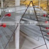 pvc coating wire mesh quail cages for sale (ISO9001 factory)