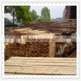 Bed slats LVL Pine or Birch wood logs Hardwood