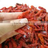 VIETNAM DRIED RED CHILLI (skype & yahoo: visimex08)