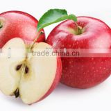 fresh apple chinese apple fruit gala apple export fresh red delicious apple fruit fresh apple