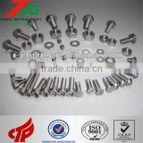 2014 hot sale High quality Niobium Screw/bolt/Nut/Washer/Fastener/Thread Rod with competive price