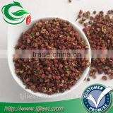 supply Zanthoxylum piperitum with low price