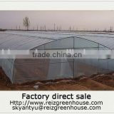 15 years warranty 100% hot galvanized pipe cheap plastic film agriculture single span tunnel greenhouse