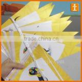 Custpm PVC triangle flag bunting,triangle flag string