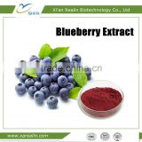 Powerful Anti-oxident Natural fruit flavor Blueberry fruit powder Blueberry Extract Anthocyanin 25%