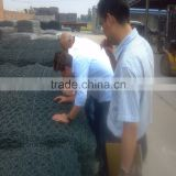 8*10 hot dipped galvanized gabion box / stone gabion basket / gabion wire mesh