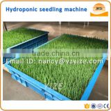 Barley wheat fodder machine, hydroponic seedling fodder machine for rabbit