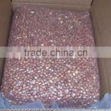 Sell: 500 MT Raw Hazelnuts