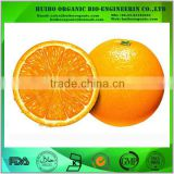 Orange juice powder / water soluble Spray Dried Orange juice powder