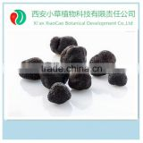 pure natural propolis extract powder,Black Mushroom Extract Powder,Black Truffle Powder Manufacturer for Anti-tumor