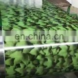 efficient customer service Prepainted GI steel coil Best price hot-dip galvanized steel coil