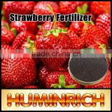 Huminrich High Utilization Boosts Seed Germination 20%Fa Potassium Humate Spray Dried Powder