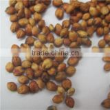 Gao Liang Premium Grade and Red Sorghum At Good Price