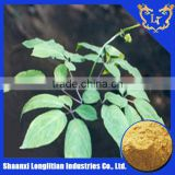 Best Sale Korean Red Ginseng Extract Capsule for Medical Use