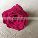 Natural preserved rose flower with 3-4cm preserved roses