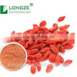Plant Extraction Manufacturer Supply Healthy Goji fruit Powder- barbary Wolfberry Extract with Polysaccharide 5-60% UV