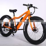 popular style 26inch atv electric bike CE approved cheap fat tire electric bike with high power 48V 250W-750W