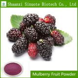 Factory Supply Mulberry Fruit Powder with 5%-25% Anthocyanin
