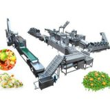 Semi-Automatic Frozen Fruit and Vegetable Production Line
