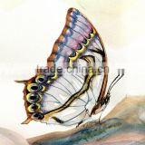 Good quality Canvas butterfly abstract oil painting Printed For Kids Room OR Living room
