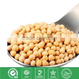 High Quality NON-GMO Soybean Extract 20% 50% Phosphatidylserine