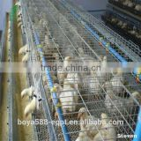 Poultry farm chicken coop/chicken breeding cage/automatic chicken layer cage manufacturer