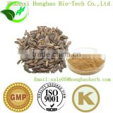 Burdock Root Extract (arctiin), Latin name: Arctium lappa L, also called Fructus Arctii Extract