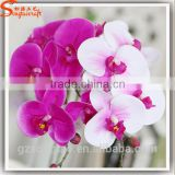 Factory wholesale artificial orchid flowers for decoration