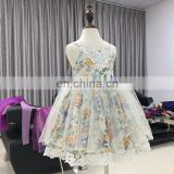 Flower Girl Baby Dress Lace Slip Tulle Dress Puffy Bustier Gown