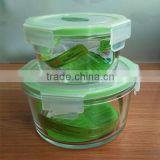 Square Glass Food container with PP lock lid