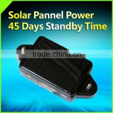 GPS Tracking System Software SOLAR POWERED GPS TRACKER                                                                         Quality Choice