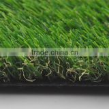 Anti-Aging Natural Grass for Landscaping Decor