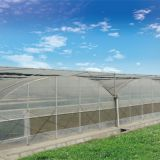 Agriculture tomato vegetable double plastic film inflatable greenhouse