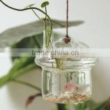 light base under vase glass bell dome