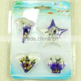 Good Quality Barcelona Fridge Magnet with Sea-life Resin Industry