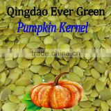 new crop chinese pumpkin seed kernel grade A