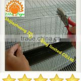 china zisa supply the quail cage plastic and stainless steel feeder