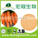 Vacuum Freeze Dried Carrot powder